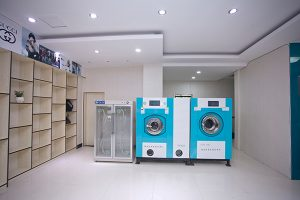 Profitable Laundry And Dry Cleaning photo